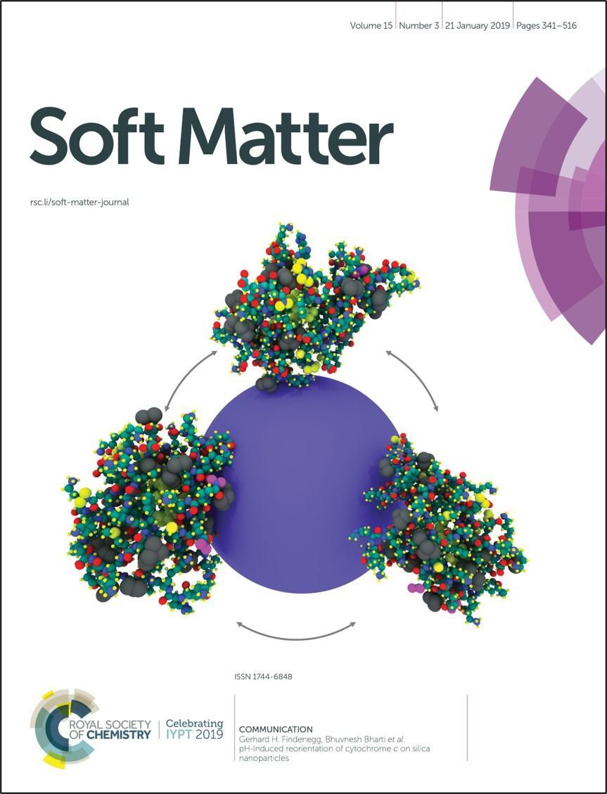 Soft Matter 2019 Cover