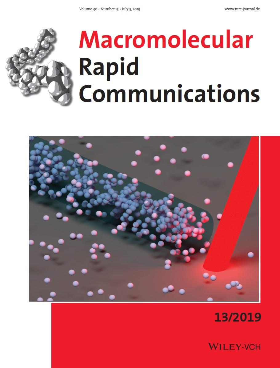 Macromolecular Rapid Communications 2019 Cover
